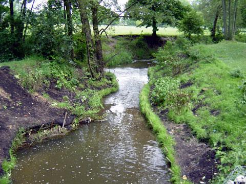Troy, Michigan - Streambank Stabilization - July 4, 2003