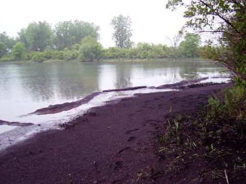 Grosse Ile, Michigan - Shoreline Stabilization - June 4, 2003