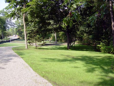 Birmingham, Michigan - Turf Establisment - 2 Weeks Later with Water Application