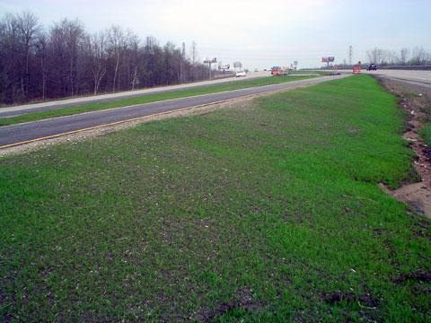Port Huron, Michigan - Compost Blanket Application - AFTER - 4/7/04